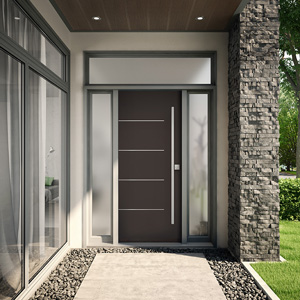 Entry Steel doors